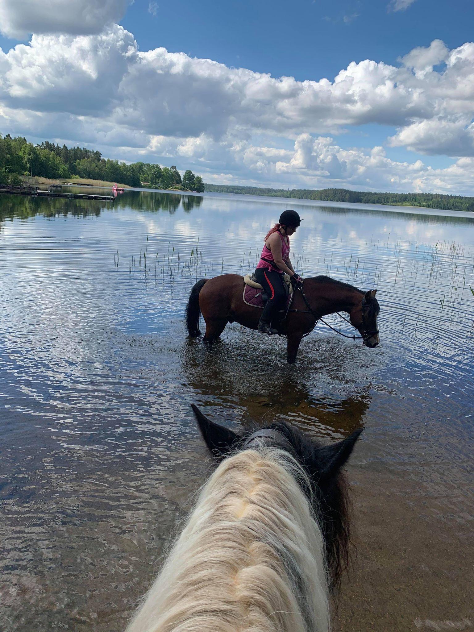 Budkavleritten 2020 -  Elin Jansson badar med hästen Brudviks Dyfodol