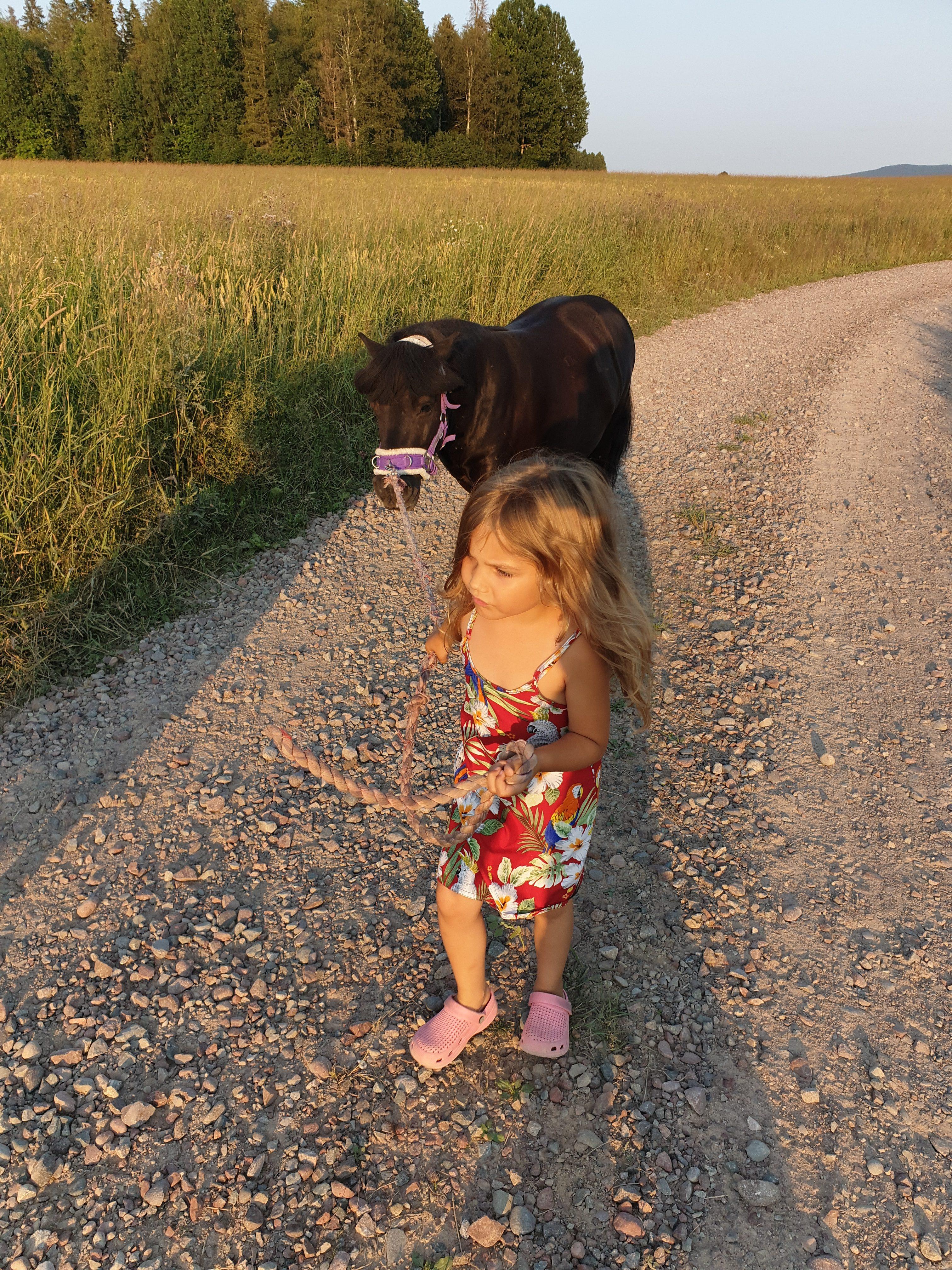 Elvira 5 år och Shetlandsponnyn Lukas